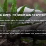 Стратегия отказа от курения Сергея Князева